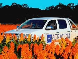 Argracom ute & Sorghum